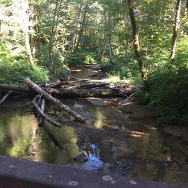 Bridge connecting campground to trail