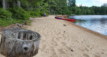 Adirondack/Brown Tract Pond