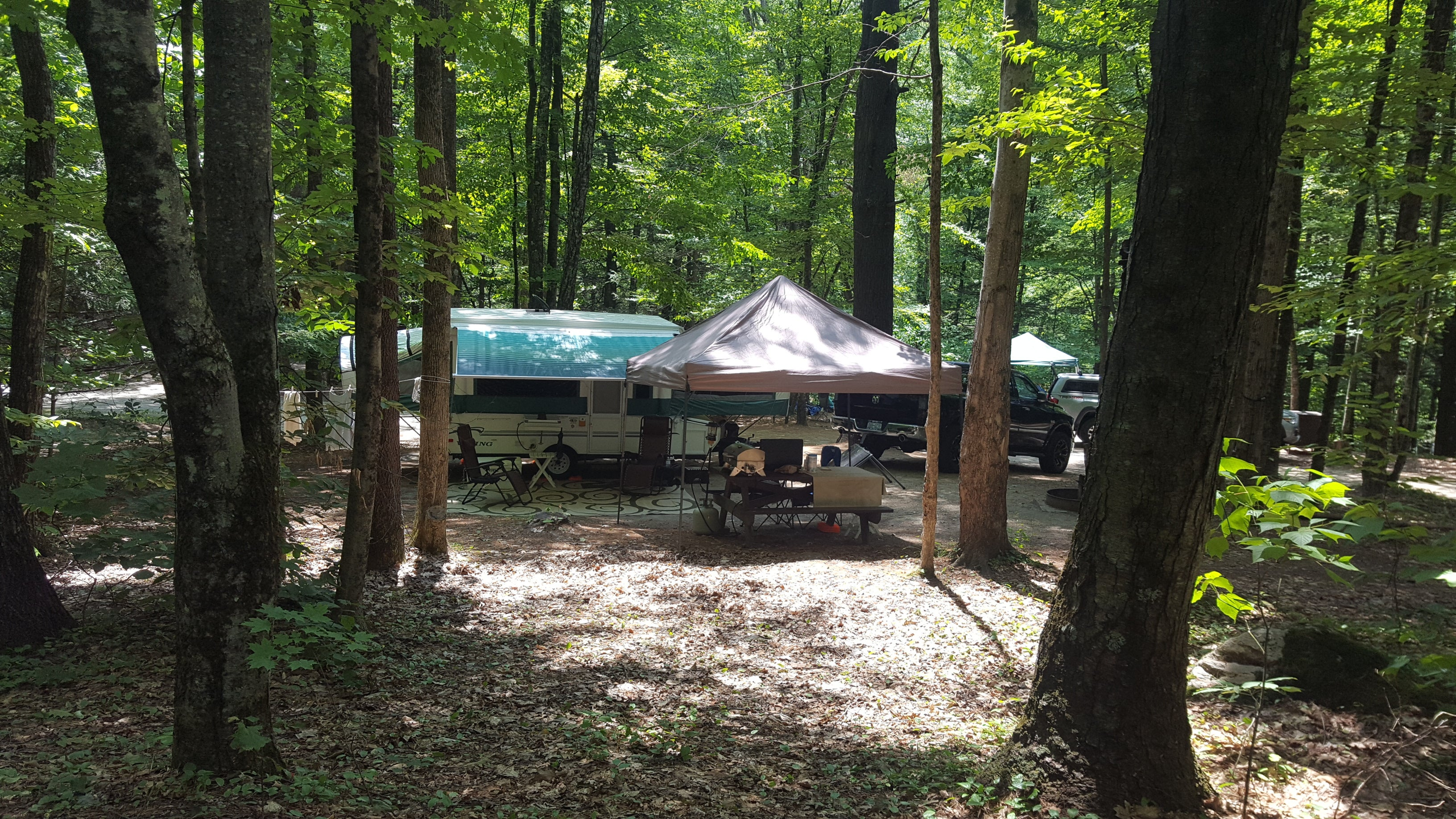 Mohawk Trail State Forest   The Dyrt
