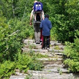 Hiking trail near cabin