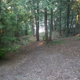 Walking trail to lake from the cabin