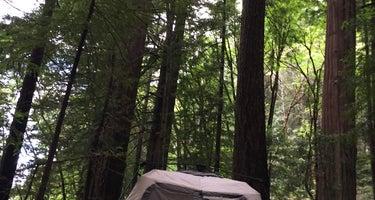 Williams Grove Group Camp