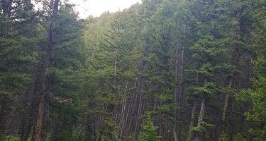 Timber Creek Reservoir