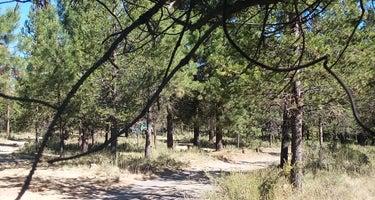 Rosland Campground