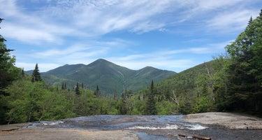 Adirondack/Meadowbrook