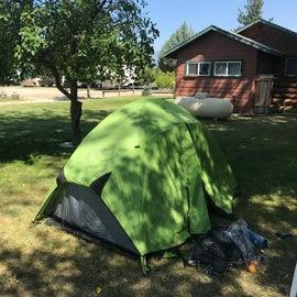 Shade camp under the apple tree