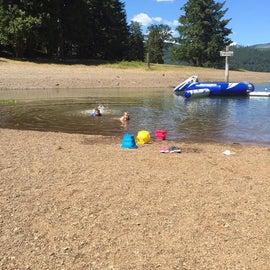 Dorena Lake Swimming Area