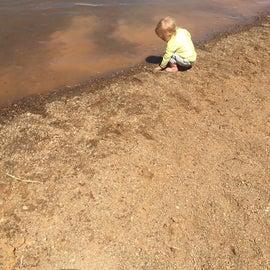 Dorena Lake muddy bottom beach