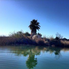 The desert oasis you didn't know Yuma had.