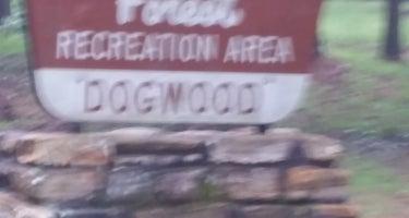 Dogwood  Complex