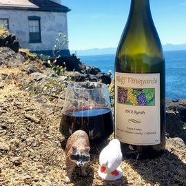 Picnic and wine at Limekiln Point State Park, San Juan Island, WA. #raccoontime #theadventuresofraccoonandgoosey