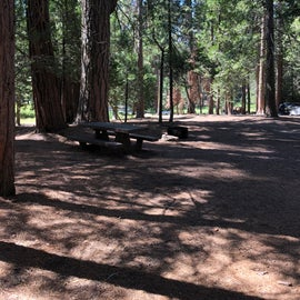 Site comes with bear bin, branch, fire pit. Fully shaded!