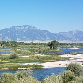 Snake River near the falls on the way to the campground is beautiful!