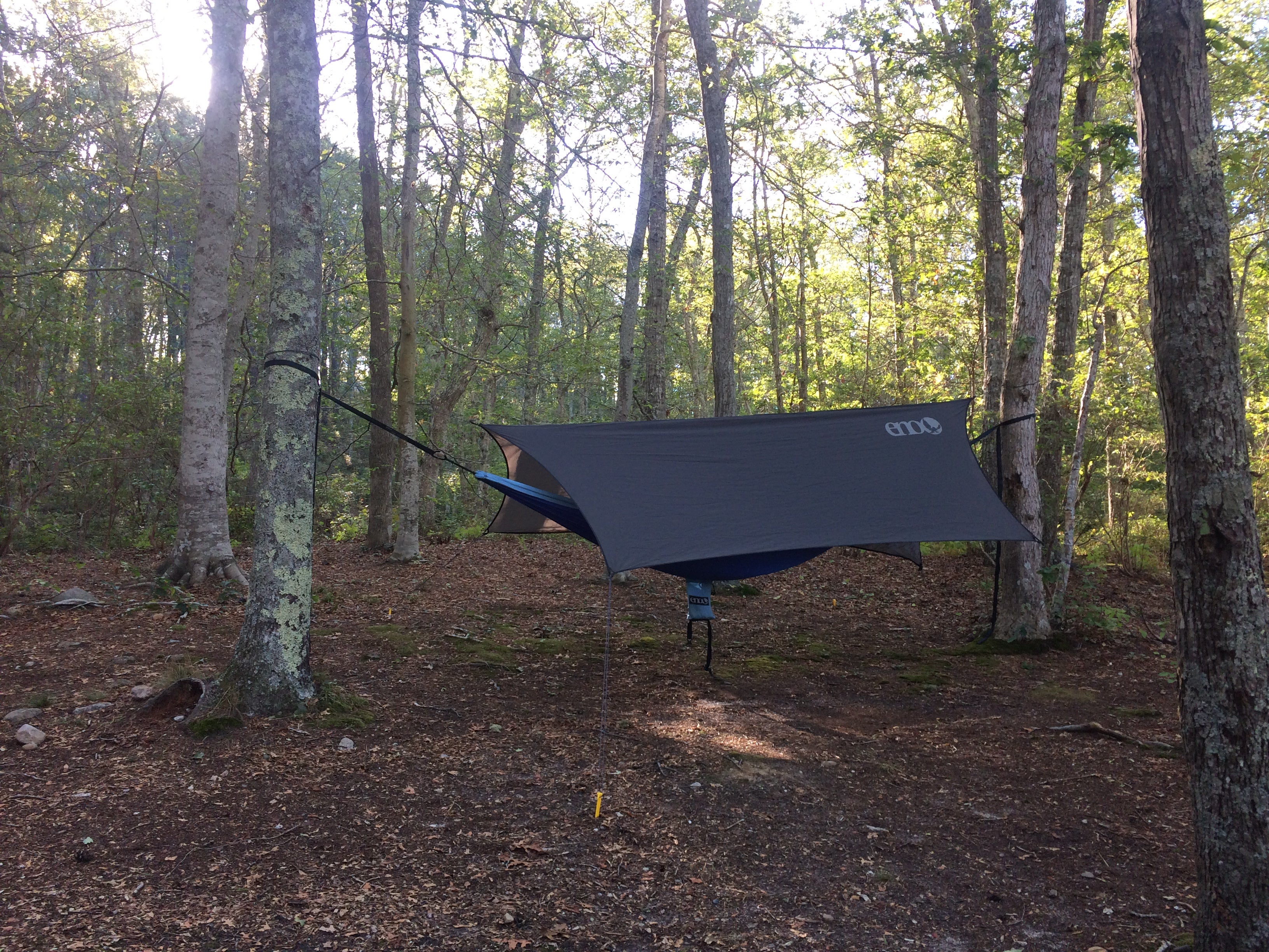 Camping in Loveland